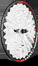 Ráfky a zapletená kola